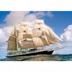 Puzzle 1000 pices : Lord Nelson