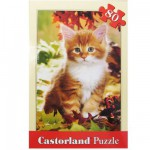 Puzzle 80 pices - Chaton en automne