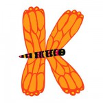 Animal Wooden Letter - K