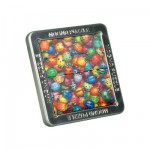 Puzzle 16 pices magntique Effet 3D : Les coccinelles