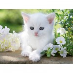 Puzzle 1500 pices : Chaton blanc