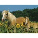 Puzzle 200 pices XXL - Mon cheval