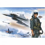 Puzzle 1000 pièces - Les légendes de l'US Air Force : F-16 Fighting Falcon