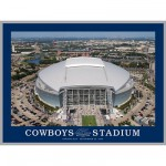 Puzzle 550 pièces - Cowboy Stadium, Dallas, Texas